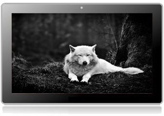 Tablet Pc 10.1 X2 Siberian Android 4.1 Jelly Bean Rk3066 Capacitiva 10p 1Gb DDR3 8Gb HDMI Bluetooth